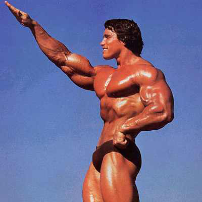 Arnold2