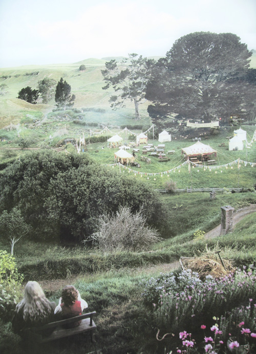 Matamata---Rotorua-023