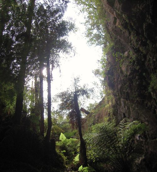 Rotorua 074