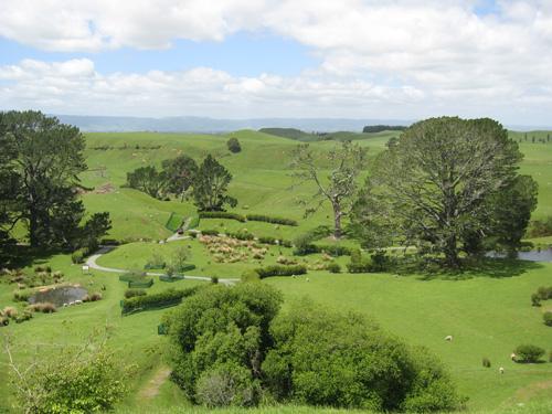 Matamata---Rotorua-022