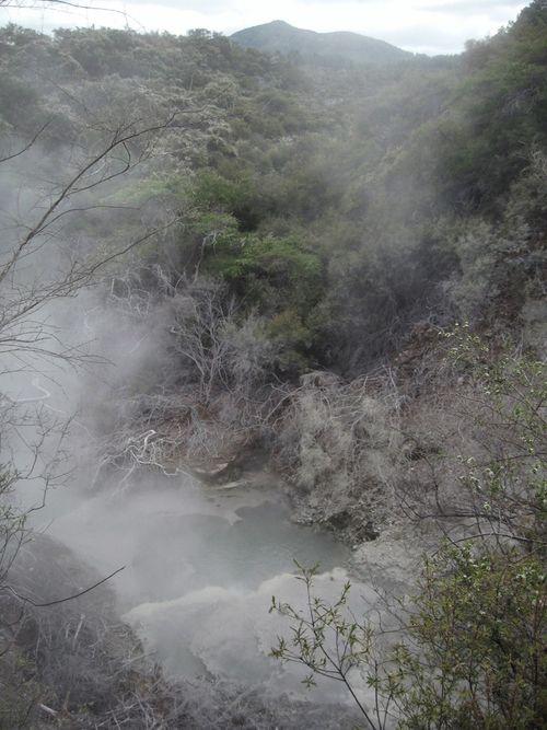 Rotorua 003