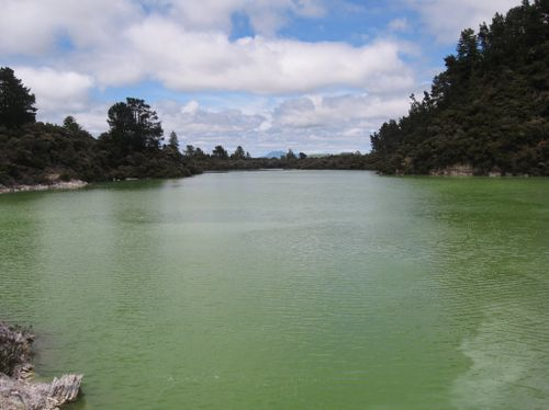 Rotorua 039