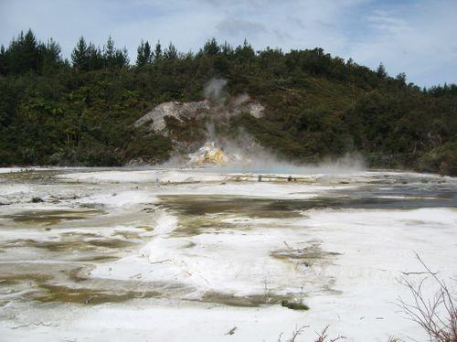 Rotorua 071