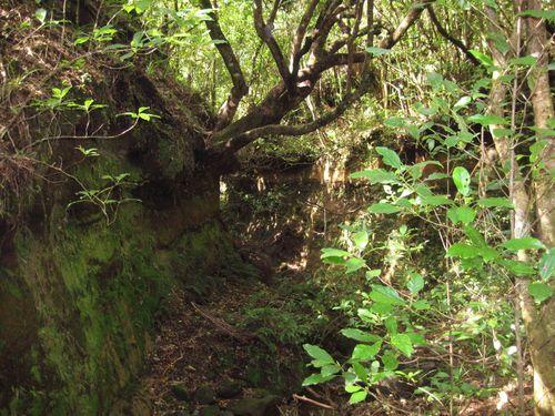 Tongariro National Park 063